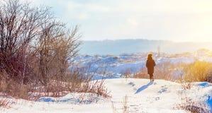 Dziewczyna chodzi w zimie w naturze Zima słoneczny dzień Światło słoneczne iluminuje zima krajobraz Osamotniona kobieta w zdjęcie royalty free
