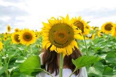 Dziewczyna chuje za słonecznikiem w polu Zdjęcia Stock