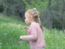 Dziewczyna ciosu dandelion Obrazy Stock