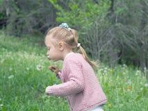 Dziewczyna ciosu dandelion Fotografia Royalty Free