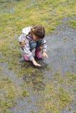 dziewczyna deszcz mały bawić się Obrazy Royalty Free
