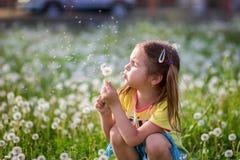 Dziewczyna dmucha z fuzzes od dandelion na polanie Zdjęcie Stock