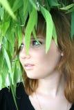 dziewczyna dosyć Fotografia Stock