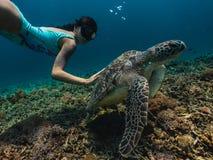 Dziewczyna freediving z ślicznym żółwiem i dotyka je zdjęcie stock