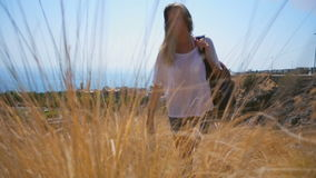 Dziewczyna iść na tle długa żółta trawa zdjęcie wideo