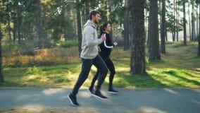 Dziewczyna i facet w tracksuits jogging w parku na jesień dniu cieszy się zdrową aktywność i piękną naturę Drzewa i… lawa zbiory wideo