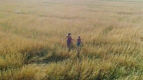 Dziewczyna i jej dziecko chodzimy przez pszenicznego pola Strzelać od trutnia Czas wolny i rozrywka w otwartym zbiory wideo
