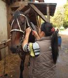 Dziewczyna i koń Obraz Royalty Free