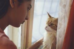 Dziewczyna i kot jesteśmy przyglądającym each inny fotografia royalty free