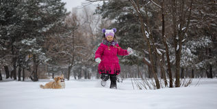 Dziewczyna i Pies fotografia stock