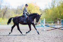 Dziewczyna jeździecki koń na jej kursie w przedstawienia doskakiwaniu obraz royalty free