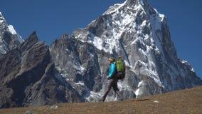 Dziewczyna jest podróżna w górach zbiory