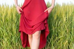 Dziewczyna jest ubranym czerwieni suknię w pszenicznym polu Obraz Stock