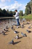 Dziewczyna karmi kaczki i gołębie ptaki na brzeg staw Obrazy Stock