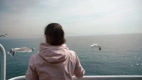 Dziewczyna karmi seagulls które latają blisko statku z turystami zbiory