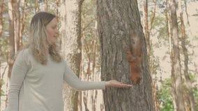 Dziewczyna karmi wiewiórki która siedzi na drzewie zbiory wideo