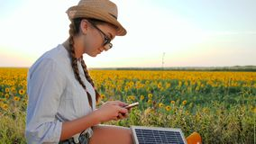 Dziewczyna komunikuje w ogólnospołecznej sieci i panelu słonecznym na tła polu używać wiszącą ozdobę, młodej kobiety wyszukiwać k zbiory
