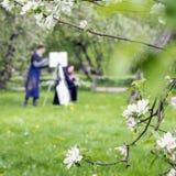 Dziewczyna maluje remisy na kanwie sztaluga w parku z kwitnąć Sakura Zamazany wizerunek dla wiosny kreatywnie tła Obrazy Royalty Free