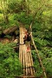 Dziewczyna na bambusa moscie nad strumykiem Zdjęcia Stock