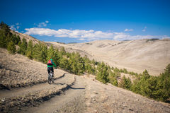 Dziewczyna na bicyklu puszku stromy wzgórze Zdjęcie Stock