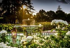 Dziewczyna na płotowej patrzeje fontannie Zdjęcie Stock