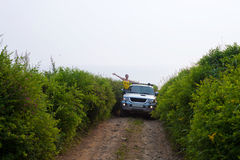 Dziewczyna na samochodzie Obraz Stock