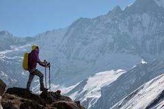 Dziewczyna na tle góra Zdjęcia Royalty Free