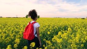Dziewczyna nastolatka żeńska młoda kobieta wycieczkuje z czerwonym plecakiem i butelką woda w polu rapeseed żółci kwiaty zdjęcie wideo
