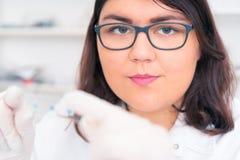 Dziewczyna nastoletnia w laboratorium karmowej ilości testy Obraz Royalty Free