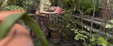 Dziewczyna nawadniał rośliny zdjęcie royalty free