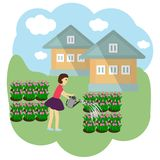 Dziewczyna nawadnia kwiaty w pasającym również zwrócić corel ilustracji wektora royalty ilustracja