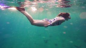 Dziewczyna nur w Czerwonym morzu blisko rafy koralowa zbiory wideo