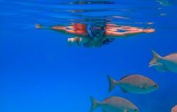dziewczyna nurkowanie Zdjęcia Stock