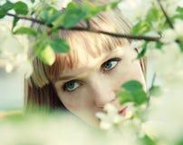 dziewczyna piękni liść Fotografia Royalty Free