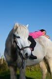 Dziewczyna pozbywa się białego konia w Denmark fotografia stock