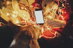 Dziewczyna seansu telefon z pustym ekranem pies pod złotym beaut zdjęcia stock