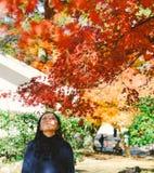 Dziewczyna siedzi pod czerwonymi klonowymi drzewami w jesień sezonie, Hikone, Japangirl pod czerwonymi klonowymi drzewami w jesie zdjęcia stock