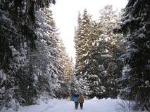 Dziewczyna spacer w zimy drewnie Zdjęcia Stock