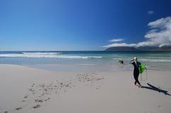 dziewczyna surfera Zdjęcie Royalty Free