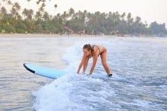 Dziewczyna surfing w oceanie obraz royalty free