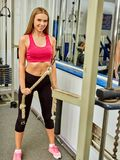 Dziewczyna trening na bicep kędzioru maszynie w sporta gym Obraz Royalty Free