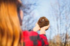 Dziewczyna trzyma jeża na szeroko rozpościerać rękach zdjęcie stock