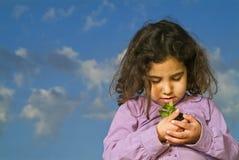 dziewczyna trzyma małą roślin Fotografia Stock