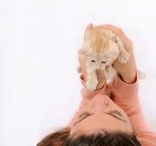 Dziewczyna trzyma up uroczego pomarańczowego małego kota, szczęśliwy zwierzęcy pojęcie Fotografia Royalty Free