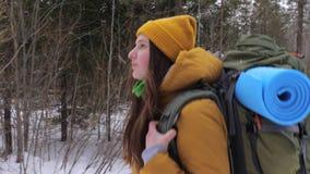 Dziewczyna turysta iść na zimy lasowej drodze z plecakiem na ona ramiona zbiory wideo