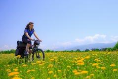 Dziewczyna turysta jedzie rower wśród kwiatonośnych poly na tle wysokie góry zdjęcie royalty free