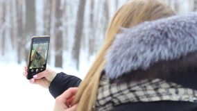 Dziewczyna w śnieżnym lesie z telefonem w odbiciu raduje się mieć zabawę zdjęcie wideo
