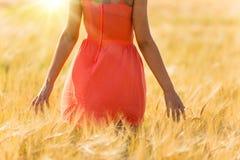 Dziewczyna w czerwieni sukni odprowadzeniu na pszenicznym polu Fotografia Royalty Free