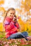 Dziewczyna w jesień parku Obraz Stock