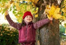 Dziewczyna w jesieni lasowy pozować, kolorów żółtych liściach i drzewach na tle, Zdjęcia Stock